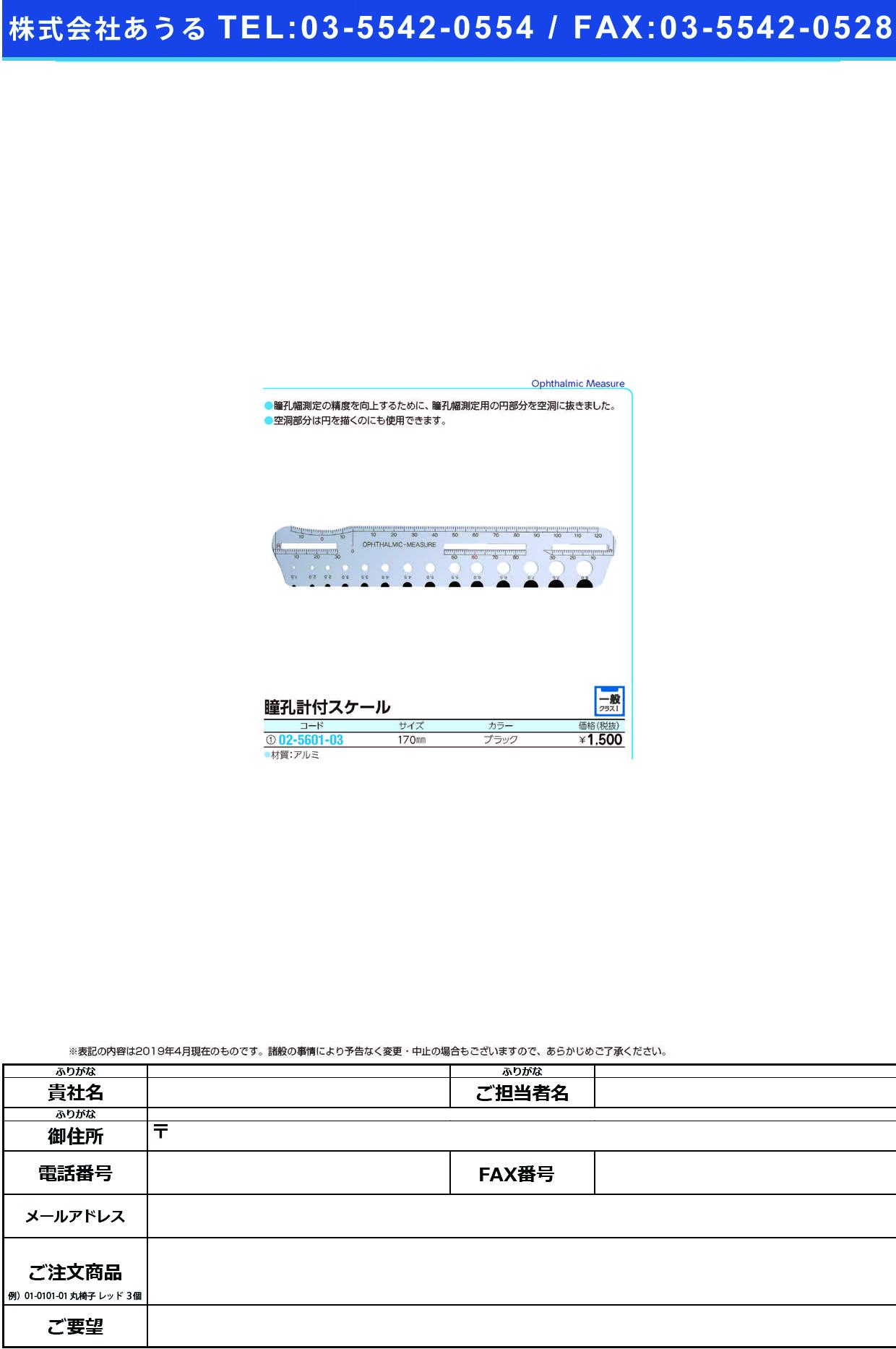 (02-5601-03)瞳孔計付スケール(ユニバーサル瞳孔計 ブラック(170MM) ドウコウケイツキスケール【1本単位】【2019年カタログ商品】