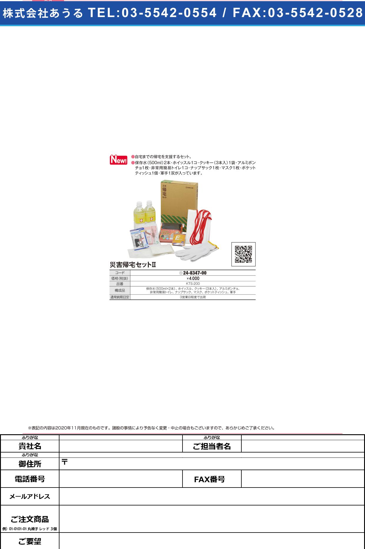災害帰宅セットⅡ(A4ファイルサイズKTS-200KTS-200(24-8347-00)【㈱キングジム】(販売単位:1)