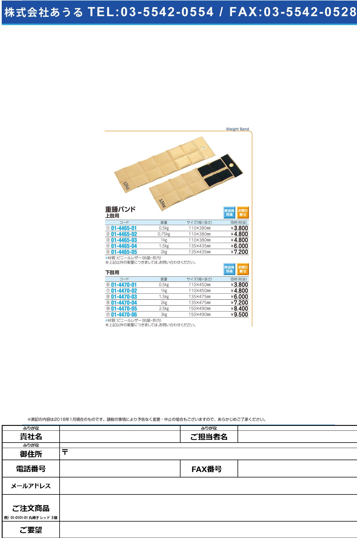(01-4465-05)重錘バンド(上肢用) 2KG ジュウスイバンド【1個単位】【2019年カタログ商品】