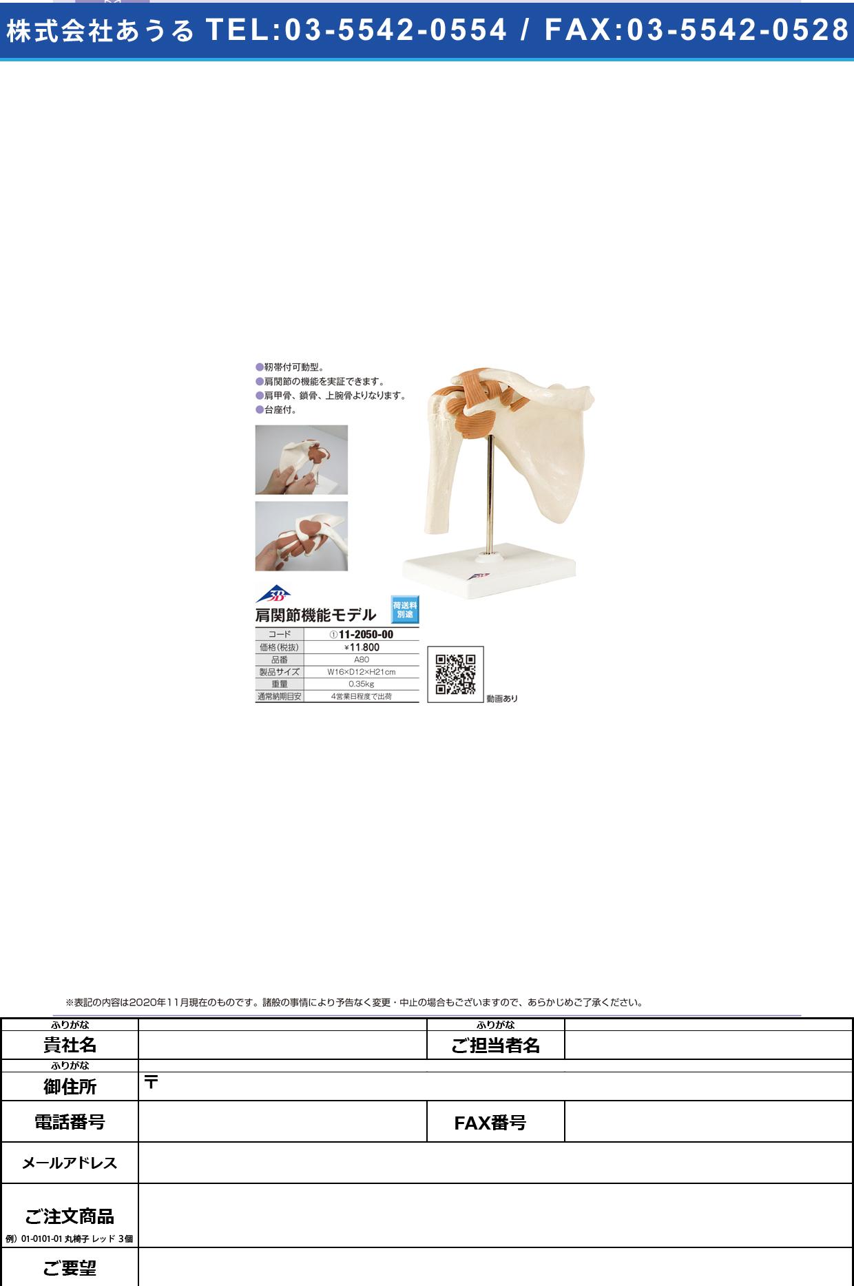 肩関節モデル(台付) A80 (16X12X20CM)A80 (16X12X20CM)(11-2050-00)【日本3Bサイエンティフィック】(販売単位:1)