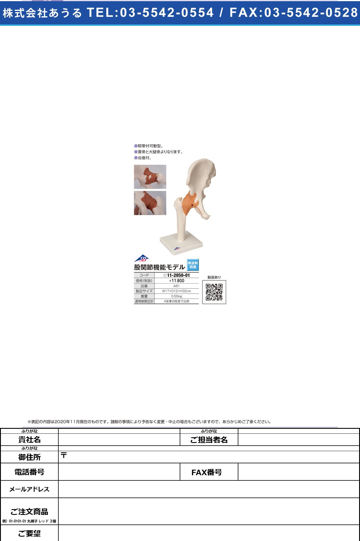 股関節モデル(台付) A81(17X12X33CM)A81(17X12X33CM)(11-2050-01)【日本3Bサイエンティフィック】(販売単位:1)